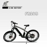Fettes elektrisches Fahrrad des Gummireifen-26inch mit MITTLEREM Motor 750W