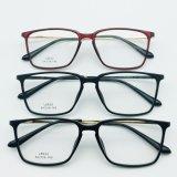 최고 가벼운 플라스틱 강철 형식 금속 사원을%s 가진 새로운 디자인 광학 프레임 Eyewear