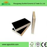 Madera contrachapada de Bintangor/madera contrachapada de Okoume/madera contrachapada comercial con el grado de BB/CC