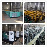 48kw Consommation de carburant faible Perkins Engine Diesel Genset