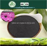 Condizionatore di bambù del terreno del carbone di legna del fertilizzante di Kingeta per i raccolti economici