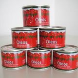 Ingeblikte Tomatenpuree 400g met de Uitstekende kwaliteit van Koshe Halal
