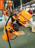 Machines à haute efficacité 2,5 tonne Chaîne double palan à chaîne électrique
