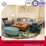 Hotel Casual Muebles para Salón con sofá (HL-2-1)