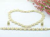 Установленные ожерелье & серьги покрынные золотом (SA720003GZ)