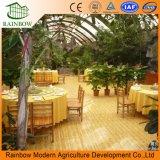 観光事業の国のための温室の生態学的なレストラン