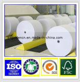 Papel de papelão em celulose de madeira virgem Placa de quadro dobrável / papel de cartão cinza / placa de marfim