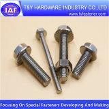 Boulon d'acier inoxydable de la qualité DIN933 DIN931 DIN6921