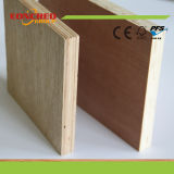 18mm Okume Best Price Commercial Plywood