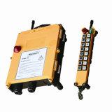 Telecomando senza fili radiofonico della gru (F21-16D)