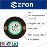 Câble blindé d'en cuivre de porteur central de fil de 2 faisceaux (GYXTW&copper)