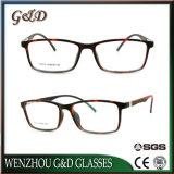 Het nieuwe Optische Frame T6014 van het Oogglas van Eyewear van de Glazen van het Ontwerp van de Manier Tr90