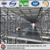 Entrepôt lourd de structure métallique avec la mezzanine