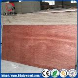 Com certificação CE 18mm/Okoume mogno folheadas compensado de madeira comercial