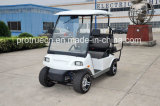 3200W Brushless Electric Golf Car (SP-EV-01)