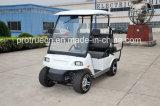 3200W бесщеточные электродвигатели автомобиль гольф (SP- EV- 01 )