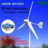 1000W 48V/96V 가정 사용을%s 수평한 바람 터빈 발전기