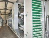Пауль Tech H Тип рамы высокого качества системы Автоматического уровня куриные каркас для плат