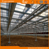 Bello Multi-Span Glass Green House con F-Clean Film Roof