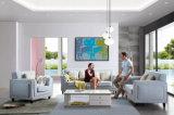 Moderne Wohnzimmer-Gewebe-Sofa-Möbel 6128