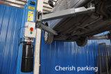 Подъем автомобиля двойного столба цилиндра 2 гидровлический 3.2t