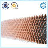 Papier Beecore Honeycomb Core utilisé pour la chambre propre et de cloison
