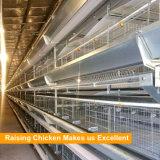 Tianrui Meilleur Design robuste châssis en H automatique de la cage de poulet de la couche de la batterie