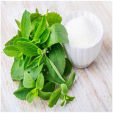Azúcar natural del Stevia del aditivo alimenticio del dulcificante el Sg80%