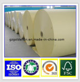 Mejor venta de virgen de madera pulpa de color offset de papel