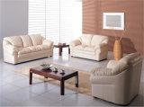 وقت فراغ إيطاليا جلد أريكة أثاث لازم (2425)