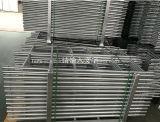 Ringlockのためのまっすぐな鋼鉄またはアルミニウム足場のステップ梯子