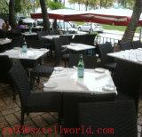 Таблица и стулы обедая таблицы самомоднейшей конструкции белая коммерчески акриловая обедая