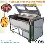 Fruit de lavage végétal Wahser Peeler de machine d'écaillement de peau de poissons d'usure