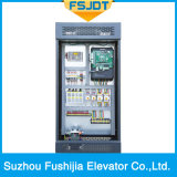 ミラーのステンレス鋼フレームワークが付いているFushijiaの別荘のエレベーター