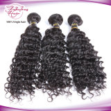 Venda por grosso de pêlos malaio onda profunda de cabelo humano tecem