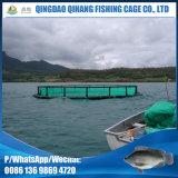 Do Tilapia adulto de Marketsize do HDPE de Qihang gaiola comercial da piscicultura