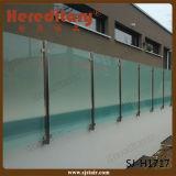 Inferriata di vetro dell'interno dell'acciaio inossidabile del doppio piatto del portico (SJ-S096)