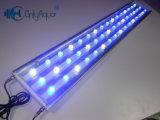 High Power 48 * 3W LED Aquarium Lighting para tanque de água salgada