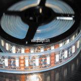 Un nastro dei 5050 LED, tubo impermeabile, 30LED/M