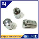 Exportar la tuerca de galvanizado de acero inoxidable