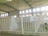 Conch PVC/UPVC 도로 담