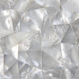 Azulejo de mosaico irregular del triángulo del labio del shell blanco de la fregona