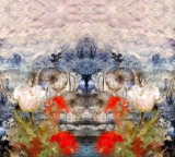 [هيغت] نوعية زهرة [ديجتل] طباعة 100% [كتّون فبريك] [زّك-003]