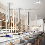 MAZORCA montada superficie LED Downlight con 10With12With15W para los departamentos, iluminación interior