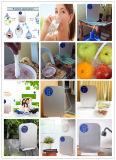 De nieuwe MiniGenerator van het Ozon van de Ozonisator voor het Schoonmaken van Groenten en Vruchten