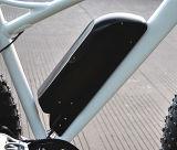 """"""" bici eléctrica del neumático gordo 26 con la venta caliente asistida del pedal (RSEB-508)"""