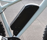 "Neumático FAT de 26"" bicicleta eléctrica con pedal asistida Venta caliente (RSEB-508)"