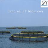 Cages de pisciculture de polyéthylène haute densité