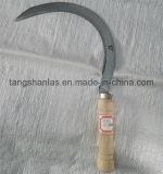 Outil manuel en bois de faucille de traitement de Sicle pour l'agriculture