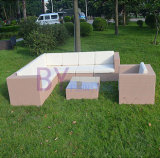 PET Rattan-Sofa-gesetzte im Freiensofa-Garten-Möbel